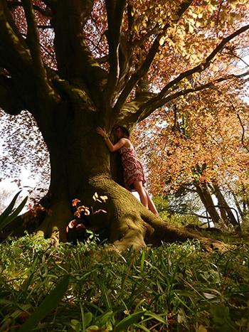 Hug-a-tree