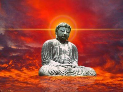 buddhas-brain-2